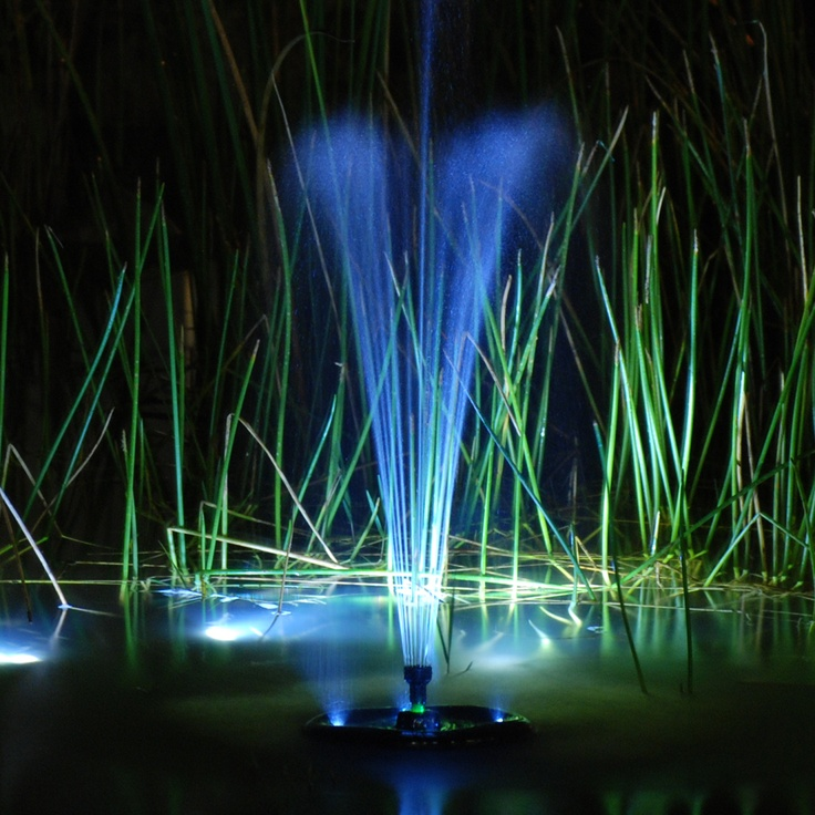 17 Best Images About Pond Lighting On Pinterest Backyard