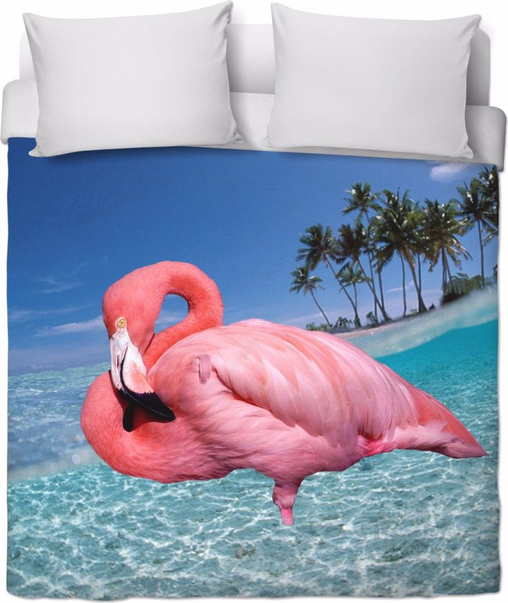 Check out my new product https://www.rageon.com/products/flamingo-and-palms-duvet-cover?aff=BWeX on RageOn!
