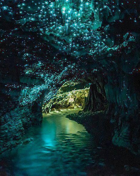 Waitomo Glow worm Caves, New Zealand. Glow worm cave, New Zealand. The walls glitter with glow worms in the dark, like a night sky