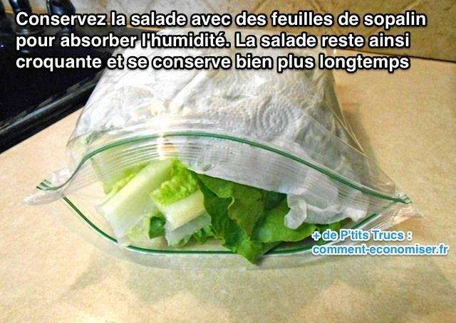 Voici le truc pour conserver la salade croquante beaucoup plus longtemps. L'astuce est de la conserver avec des feuilles de sopalin pour absorber l'humidité. Découvrez l'astuce ici : http://www.comment-economiser.fr/conserver-salade-au-frigo.html?utm_content=buffer2255f&utm_medium=social&utm_source=pinterest.com&utm_campaign=buffer