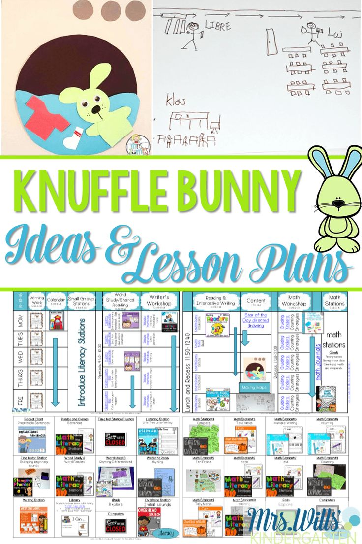 Knuffle Bunny Lesson Plans are here! We love this Mo Willems book and so will your kindergarten students. Writing, reading,craft, math, and literacy activities are featured in these lesson plans.