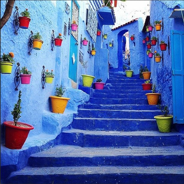 3 Most Bluest cities in the World! Chefchaouen medina, Jodhpur and Juzcar painted all in blue