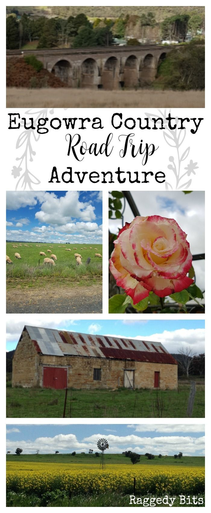 Let me take you on a journey to one of the most beautiful parts of the Australian countryside. Join me for our Eugowra Country Road Trip Adventure.