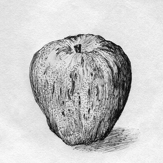 13 Best Cross Hatching Images On Pinterest