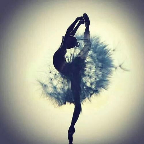 The Beauty of a dance...