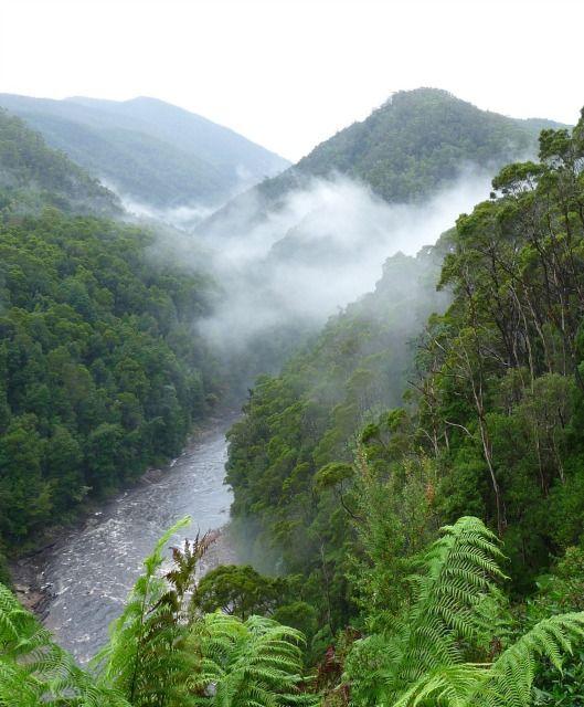 Tasmania, Australia ~ http://suitcasesandsunsets.com/tasmania-australia.html