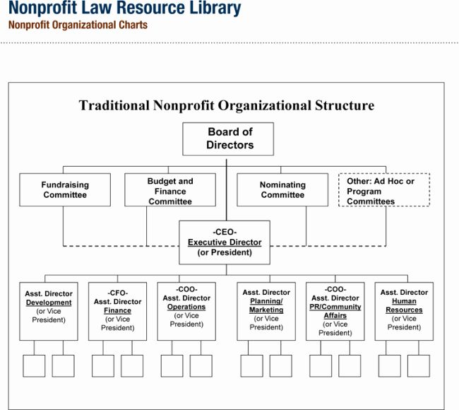 Nonprofit Organizational Chart Template Awesome Non Profit Organizational Chart 5 Best Samples In 2020 Organizational Chart Organizational Structure Organization Chart
