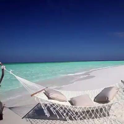 [Видео] «- Что такое фигня? - Вот представь себе: море ...