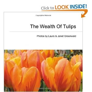 Like to look at our tulip photos up close and personal?  Stop by Amazon and pick up the convenient take home size.  $16.95    http://www.amazon.com/Wealth-Tulips-Laura-Greenwald/dp/1452802882/ref=sr_1_3?s=books=UTF8=1292195472=1-3
