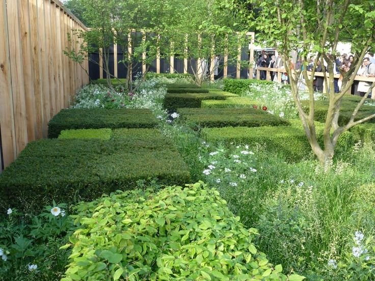 1000 images about planting schemes on pinterest gardens for Garden design planting schemes