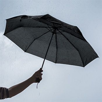 Big umbrella, small cost! Umbrellas have a full 42-in. arc, yet fold up to a…