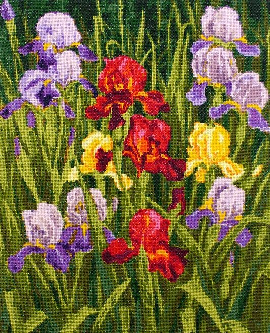 Instant Download Counted Cross Stitch Chart PDF Pattern N78ld - Garden Irises