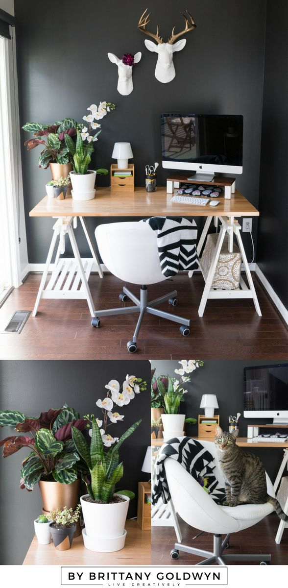 My Fall 2016 One Room Challenge Reveal! This is my modern multi-use space, which we use for my office space, our dining space, and kitten cuddles | black walls, modern office space, white faux taxidermy