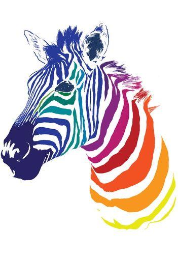 ☆ Rainbow Zebra :¦: Art By Olechka ☆