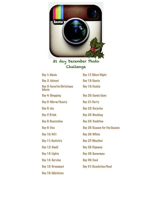 31 Day December Photo Challenge