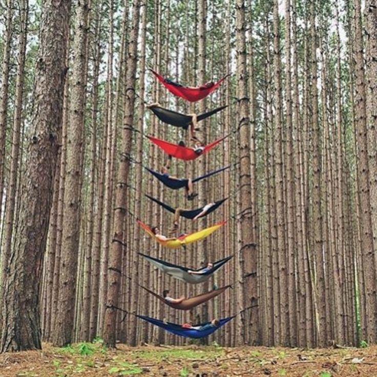 Epic. // #nature #forest #tree #relax #hammock #travel #adventure #fogcity #fogcitycider #fogcitysangria #redsangria #sangria #sangria #cloudycider #cider #east9thbrewing