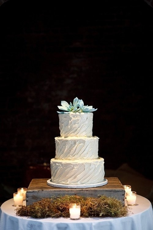 Simple succulent cake with some billy buttons for a pop of color