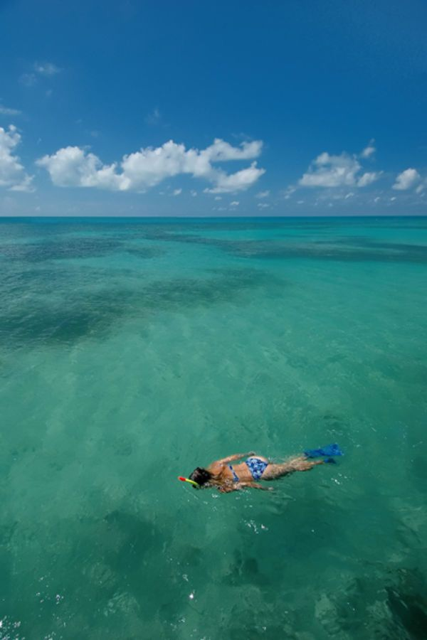 Florida Keys Road Trip | Things to Do in the Keys | Road Trip | Snorkeling