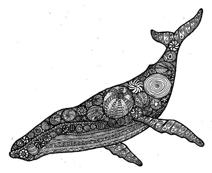 Zendoodle 1610