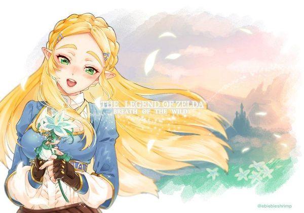 Thelegendofzelda Breathofthewild Dessin Fanart Ebiebieshrimp Jeuvideo Jeuvideo Princesse Zelda Dessin Zelda La Legende De Zelda