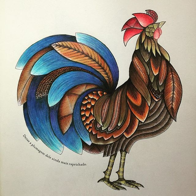 Colored Pencils Coloring Books Animal Kingdom Chicken Art Colour Johanna Basford Wood Work Nice Roosters From Instagram