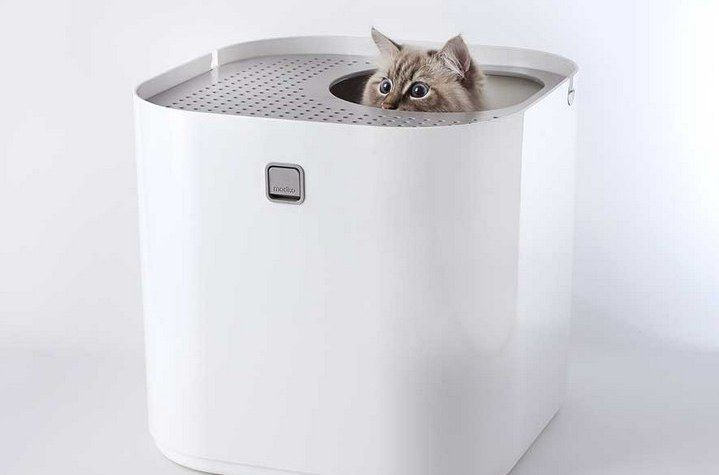 18 Cat Products That Won't Cramp Your Home's Style