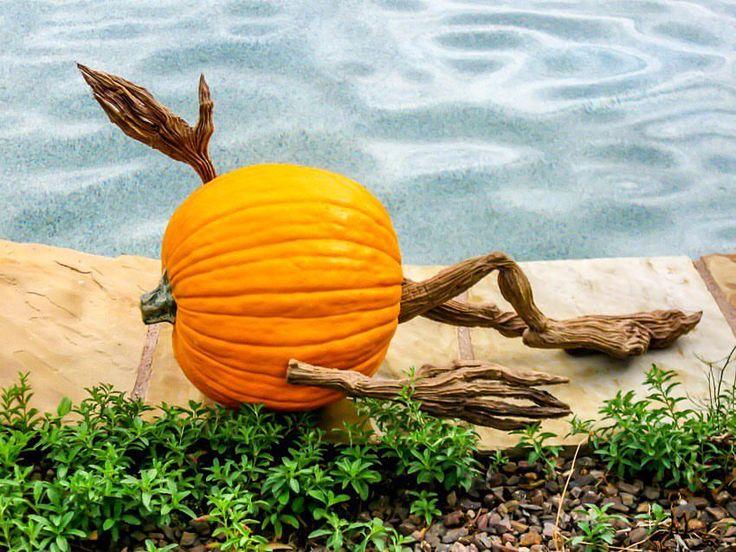 12 best Halloween Fun! images on Pinterest | Halloween fun ...