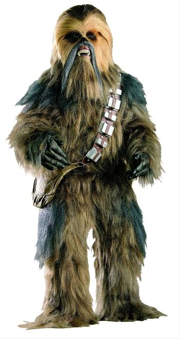 Supreme Edition Star Wars Chewbacca Costume - This is a supreme Chewbacca full mascot costume from Star Wars. The costume is a one piece bodysuit. To give this costume a realist look, the manufacturers constructed it in the same manner as the one used in the movies; the high quality multi coloured hair is hand layered onto the body. The majority of the hair is shades of brown but at the shoulder and down the arms the hair is shades of grey. #chewy #yyc #mens #calgary #costume #starwars