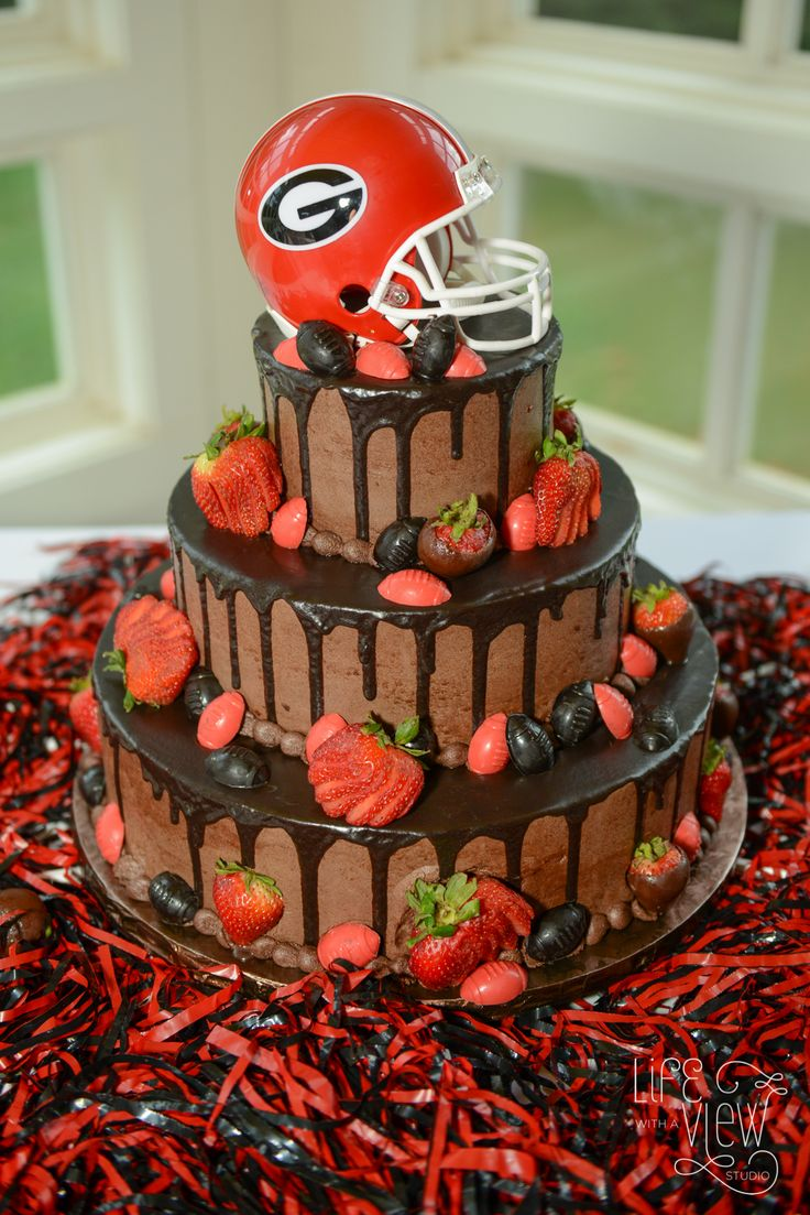 UGA Cake - Bulldog - University of Georgia - Wedding Photography at Homestead at Cloudland Station - Photography by Life with a View Studio