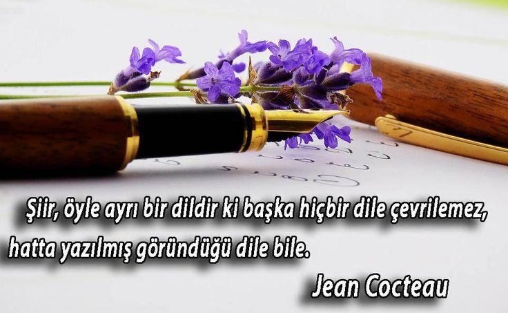 Şiir İle İlgili Sözler #güzelsözler #anlamlısözler #manalısözler #güzel #sözler #özlüsözler #şiir #şiirler