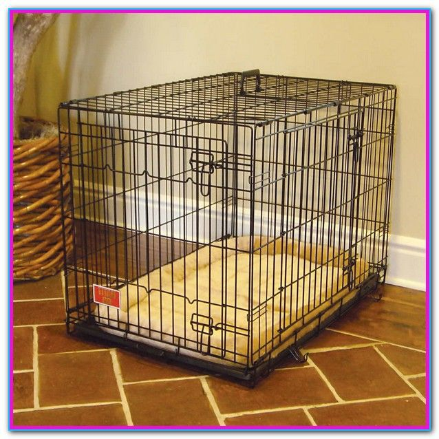 Dog Cages Sold At Petsmart Dog Cages Petsmart Dog Puppies