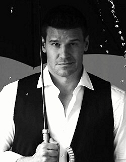 David Boreanaz.  He's so fabulous as Seeley Booth!