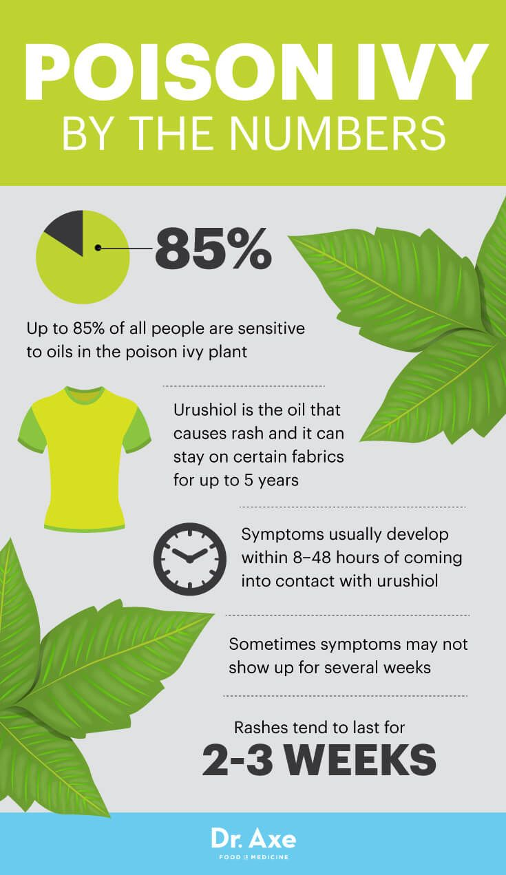 Poison ivy rash by the numbers - Dr. Axe http://www.draxe.com #health #holistic #natural