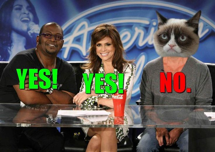 Grumpy Cat On American Idol