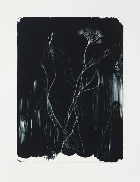 Raben Davidsen, Cathrine - The Dwelling