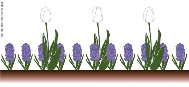 """Potreste piantare fitte file di Hyacinthus orientalis blu alternate a file di Tulipa """"Maureen"""" molto distanziati tra loro, così da ottenere degli spot bianchi in una distesa blu. (c) Elena Piccinin"""