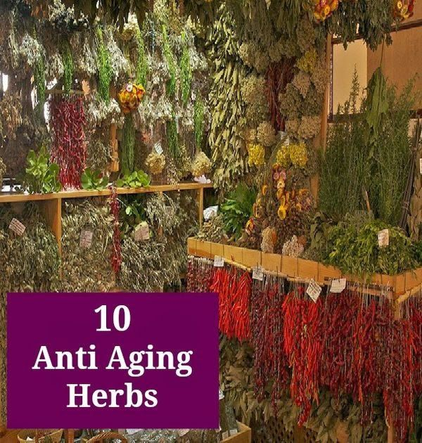 Anti-aging herbs are used to slow down the aging process ...