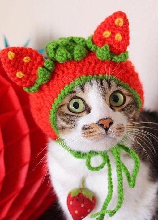 Crochet Strawberry Hood // inspiration only
