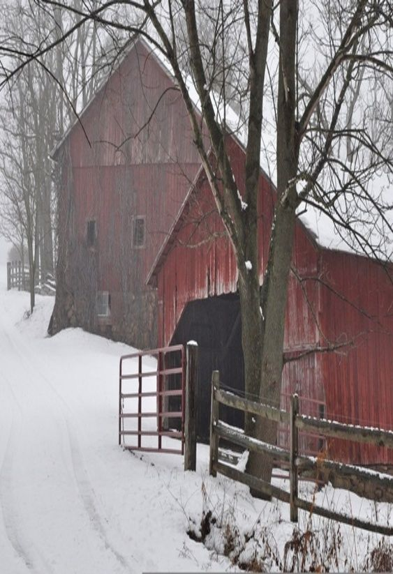 Red barn full of horses with me scrunching through the snow in the morning out to give them their grain would be so country.