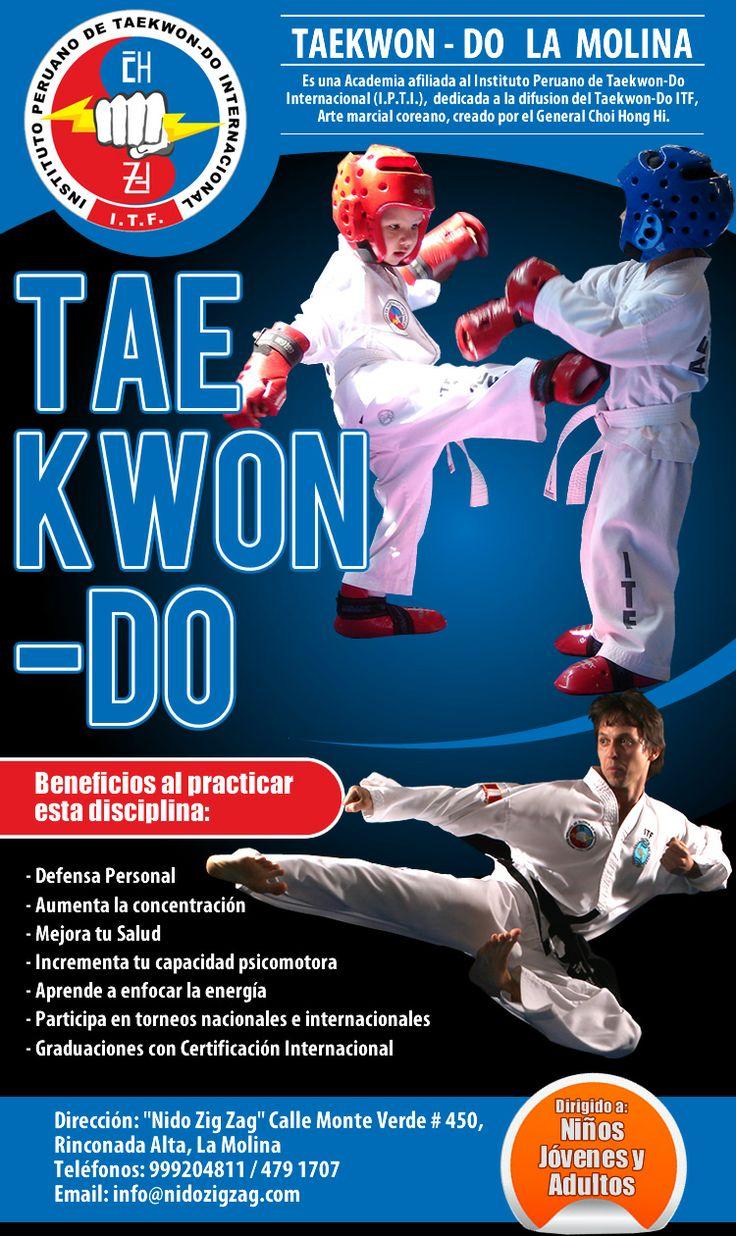 Diseño de flyer para campaña de correos masivos Tae Kwon ...