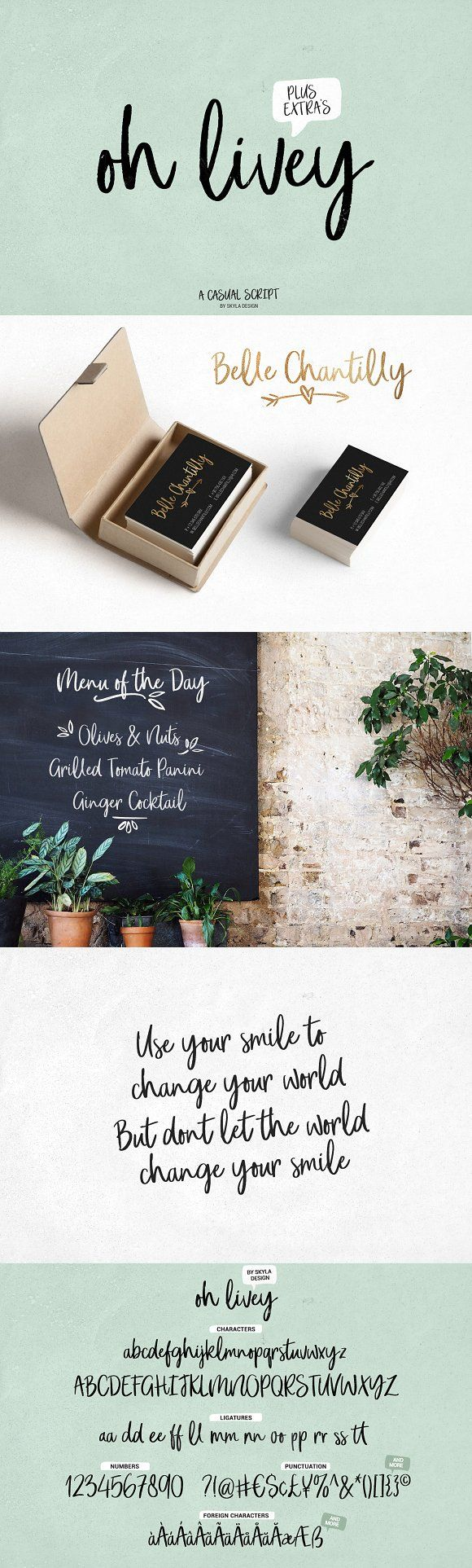 Casual Brush Script Font Oh Livey by