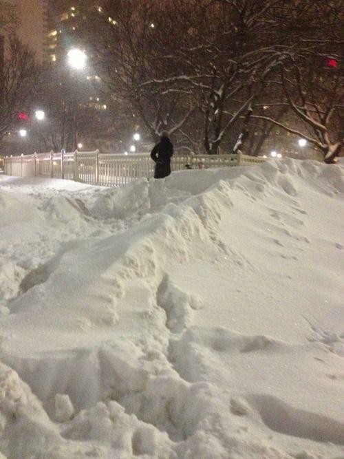 Winter wonderland…Toronto, Canada