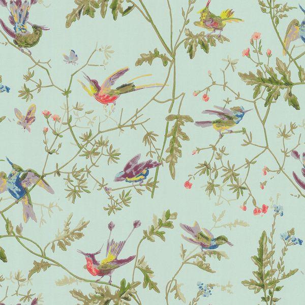hummingbirds - finest wallpaper