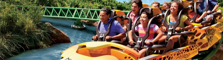 Save 39% on Busch Gardens plus 4 more top Tampa Bay attractions