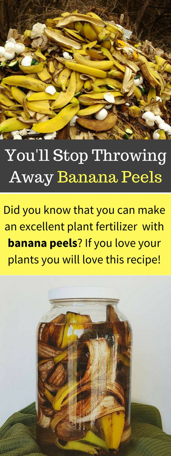 Using Banana Peels in the Garden for Fertilizer and Pests