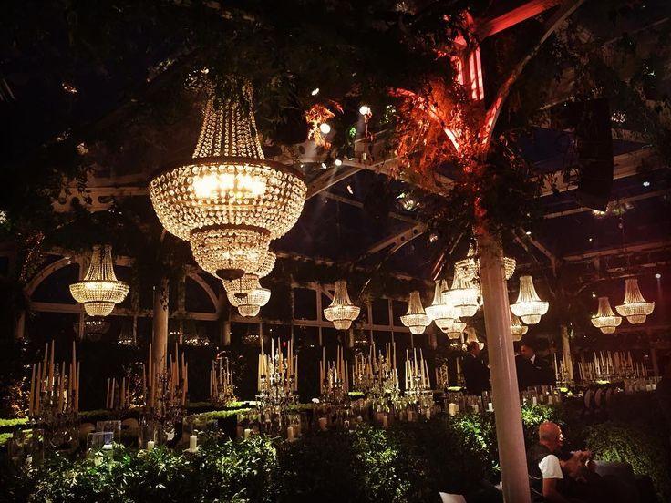 #lustres #chandeliers #lamparasdecristal #gala #galadiner #jantaresdegala #cena #cenadegala #catering #bodas #luxuryevents #luxuryevent #eventservices #casamentos2016 #eventosdeluxo #eventos