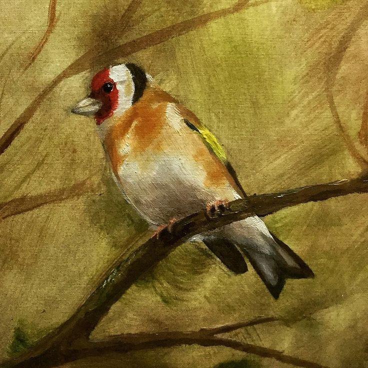 Goldfinch Oil painting by Ben Farnell  http://ift.tt/2AgNjvo  http://ift.tt/2mKFdoS  #birdartben #oilpainting #goldfinch #etsy #birds #birdart