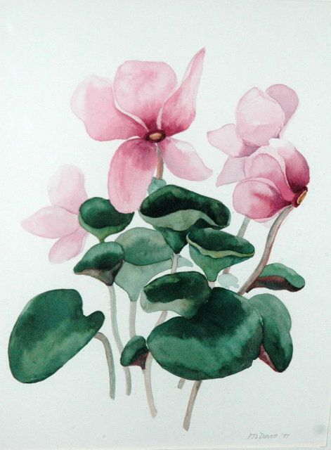 Watercolor Painting of Cyclamens -M.Davis *PRICE REDUCED!*