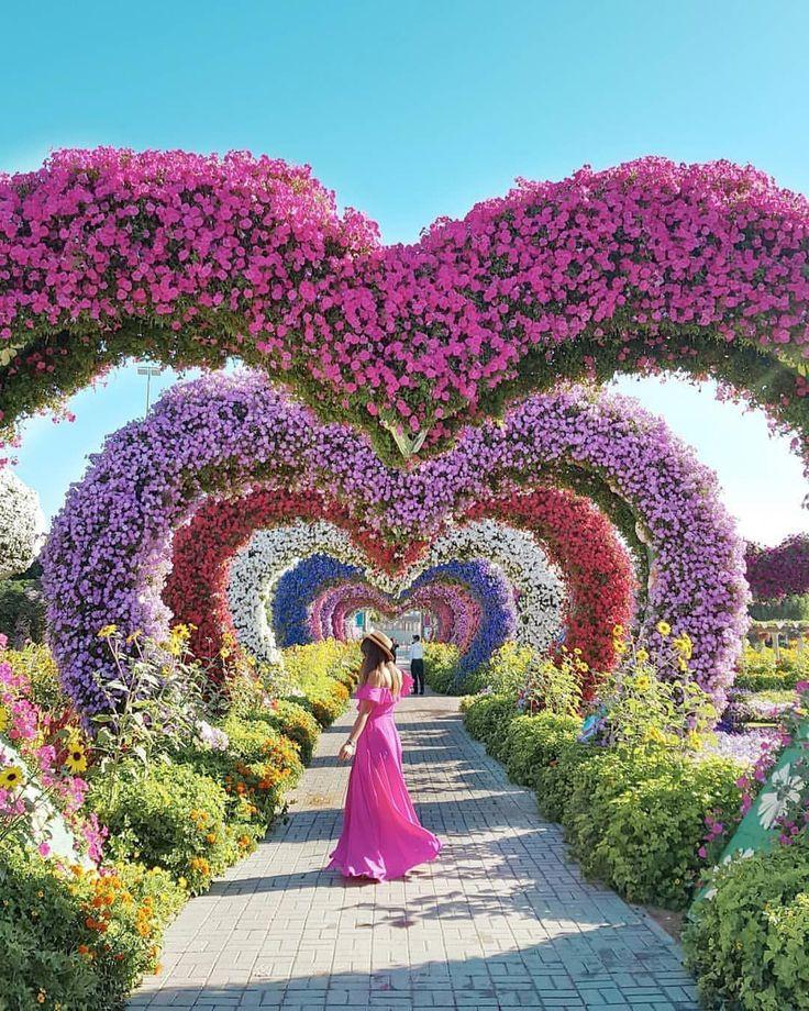 Organicgardeningpowderymildew Dubaigarden Botanical 400 x 300