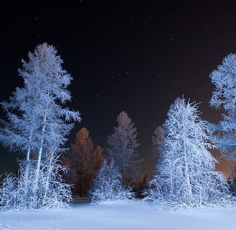 Тихо-тихо сказку напевая,  Проплывает в сумерках зима.  Теплым одеялом укрывая Землю и деревья, и дома. Над полями легкий снег кружится  Словно звезды падают с небес. Опустив мохнатые ресницы,  Дремлет в тишине дремучий лес  Спят на елках золотые совы  В сказочном сиянии луны.  На опушке леса спят сугробы, Как большие белые слоны.  Все меняет форму и окраску.  Гасят окна сонные дома  И зима, рассказывая сказку,  Засыпает медленно сама.